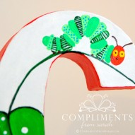 Caroline Hand Painted Letters The Very Hungry Caterpillar - Caterpillar